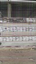 护壁钢板专业回收中心、高要护壁钢板施工单位报价表图片