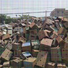 东莞高埗镇钢板桩围护工程、承接6米打桩报价图片
