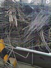云浮65黄铜回收市场图片