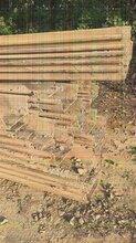 茂名鋼板樁支撐施工方案廣東創達工程施工