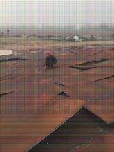 中山黃圃鋼板樁基礎工程有限公司公司包你滿意