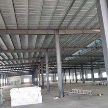 深圳市钢结构工程公司钢结构施工与设计雨棚、板房搭建图片