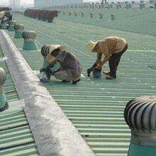 广东惠州市钢结构铁皮棚搭建平台临时仓库搭建