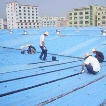 廣州白云區鋼結構星鐵瓦搭建工程造價