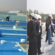 惠州市钢结构安装施工队,厂房翻新换瓦,星铁棚施工队图片