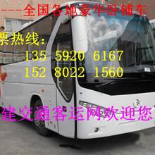 直达)霞浦到邓州车站发车班次的长途客车-图片