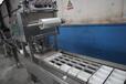 血豆腐全套加工生產線,血豆腐加工設備