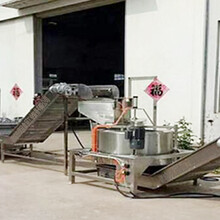 全自动南瓜脆片油炸机-油炸南瓜脆片成套设备图片