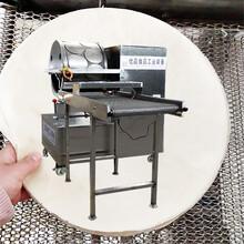 原材料生产春卷皮全自动生产春卷皮机器绿色食品图片