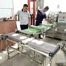 生产东北高筋饼机器新型全自动筋饼生产设备图片