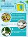 雞群采食量下降是什么原因導致的?