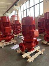 津南立式单级消防泵厂家图片