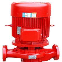 辛集室外消火栓泵XBD立式多級消防泵廠家圖片