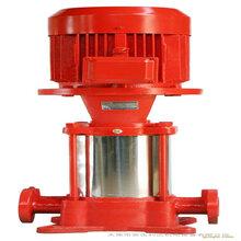 北京东城供应室内消火栓泵价格图片
