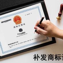 注册公司需要什么资料丨注册公司丨公司注册丨代理记账,广州金不换