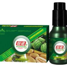 厂家直销叶面肥——倍诺瓜类水果专用(营养增产调理剂)