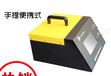 泵吸式氣體分析儀表