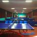 高规格乒乓球照明灯