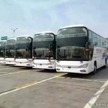德清到通許的豪華直達大巴車//臥鋪客車多少錢?