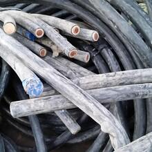 石柱电缆线回收,石柱电缆回收报价,今日图片