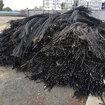 德州电缆回收-德州光伏电缆回收价格图片