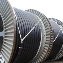 安澤電纜回收-安澤(銅芯)電纜回收價格微漲圖片