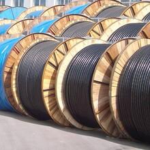 濮阳电缆回收-(诚信价高)濮阳施工剩余电缆回收(连续上涨)图片