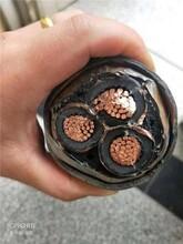 牟定電纜回收-牟定二手電纜回收-全省價高圖片