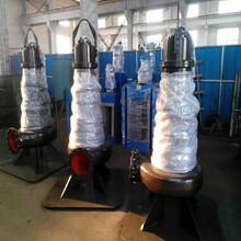 天津东坡QSZ雪橇式轴流泵耐腐蚀轴流泵大量供应图片