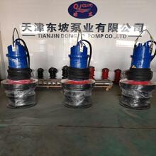 轴流泵型号-大流量污水泵-大流量轴流泵图片