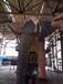 梧州大型新博娱乐娱乐注册大象出租出售新博娱乐娱乐注册大象租赁