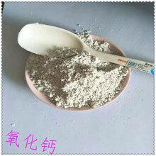 厂家供应氧化钙生石灰粉白灰白灰粉加气砖用生石灰粉图片