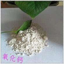 恒州供应氧化钙脱硫剂氧化钙土壤改良用生石灰污水处理用氧化钙量大�从优图片