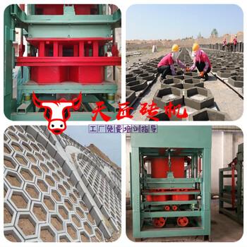 標磚設備護坡磚機空心六棱免燒磚機各類路面面包透水磚機
