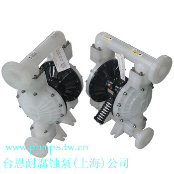 台恩耐腐蚀泵制造(上海)有限企业PDP40-PP-PTFE