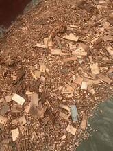 今日;阿拉善盟废电机线回收公司怎么样图片