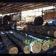 白城建筑木跳板品牌排行图片