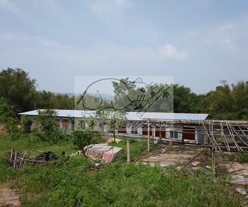 台山市白沙镇国平竹鼠养殖场