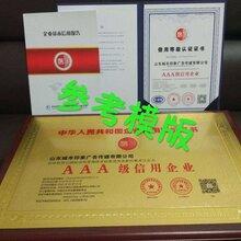 新疆市化學品行業招投標要辦理以下榮譽證書圖片