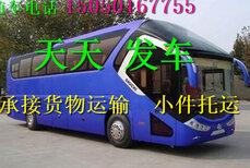 客车)嘉兴到微山的直达客车(车站发车时间表)多少钱?多久图片2