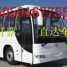 2019查詢新昌到招遠的汽車直達幾個小時(車站票價多少錢?