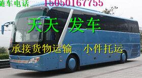 客车)嘉兴到微山的直达客车(车站发车时间表)多少钱?多久图片5