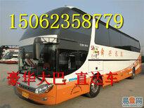 客车)嘉兴到微山的直达客车(车站发车时间表)多少钱?多久图片4