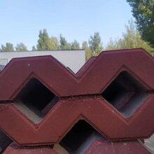衡水草坪砖、植草砖厂家报价图片