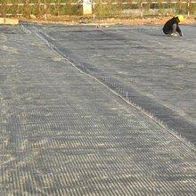 大慶鋼塑土工格柵廠家價格泰安潤潔圖片