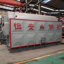 延寿蒸汽锅炉厂家销量价格恒安锅炉图片