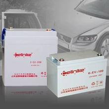 圣阳赛耐克蓄电池6-EV-606-EV-806-EV-1006-EV-1206-EV-150图片