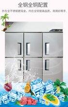 金松六門商用冰箱QB1.6L6U六門單溫冰箱不銹鋼冷凍冰箱圖片