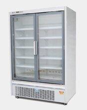 凯雪玻璃门冷冻柜JXC-CVHDL3三玻璃门整机冷冻展示柜便利店饮料陈列柜图片