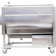 山東銀鷹機械設備CX150商用洗菜機銀鷹洗菜機圖片
